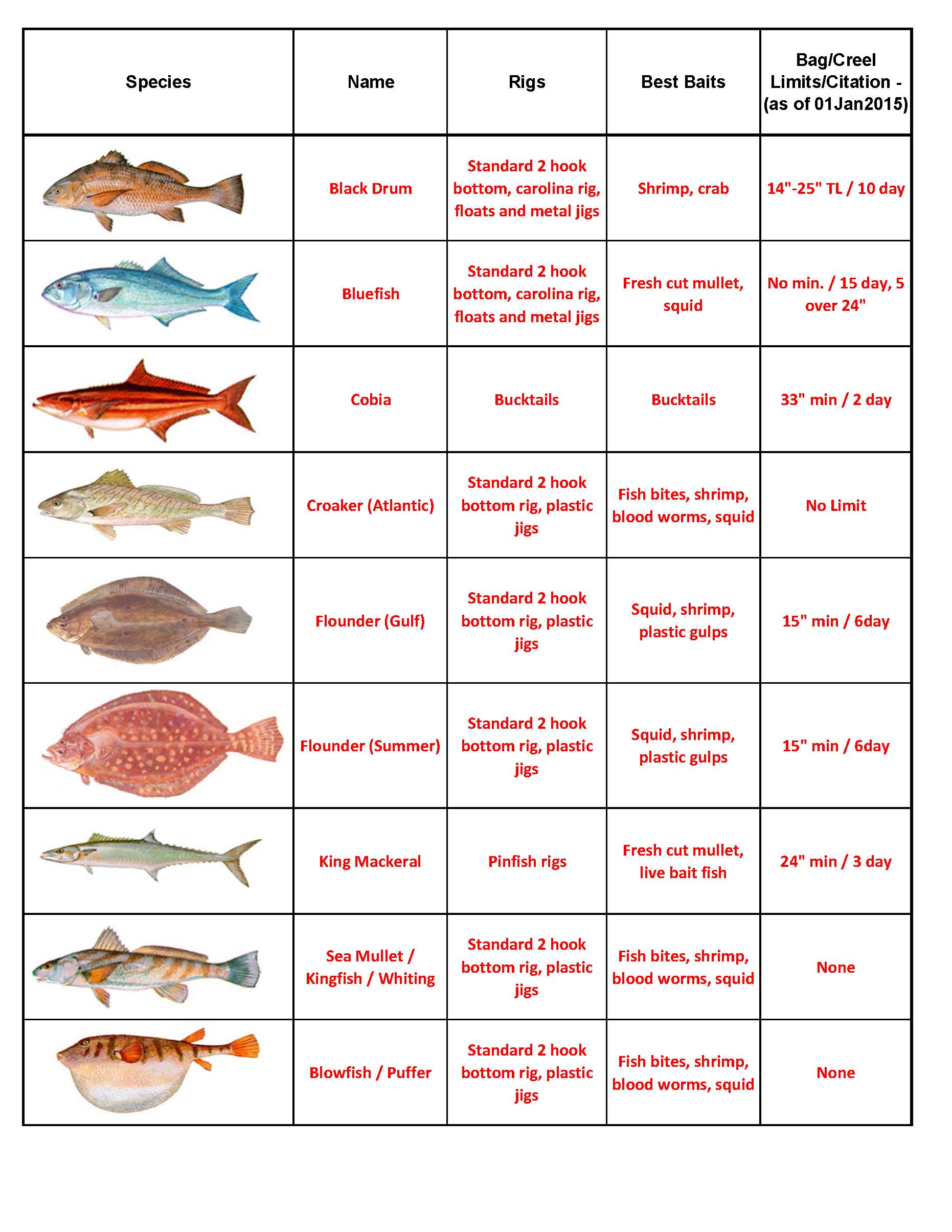 Quick look fish id capt tony 39 s for Nc saltwater fishing regulations 2017